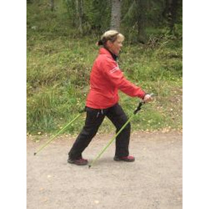 Nordic Walking Pro logo