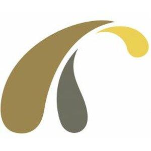 Held Drone-Service logo