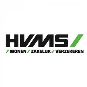 HVMS Holding B.V. logo