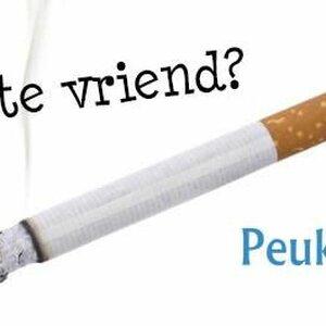 Peukuit.nl image 1