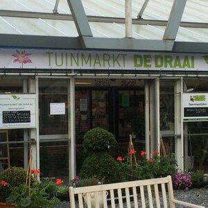 Tuinmarkt de Draai B.V. image 2