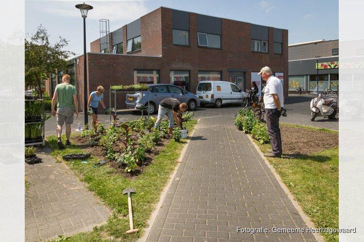 Deze week worden er zomerplanten en bollen geplant op drie plekken in Heerhugowaard