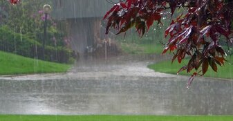 Frisse wind door provincie: vanaf donderdag flinke regenbuien