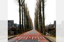 Middenweg-Zuid, van takkentapijt tot fietsstraat