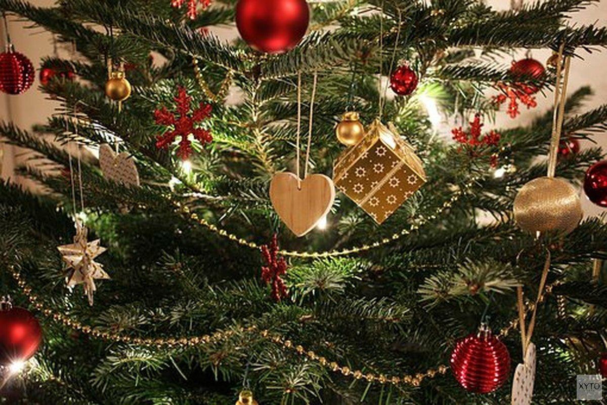 Eindelijk Antwoord Op De Prangende Vraag Wanneer Mag De Kerstboom