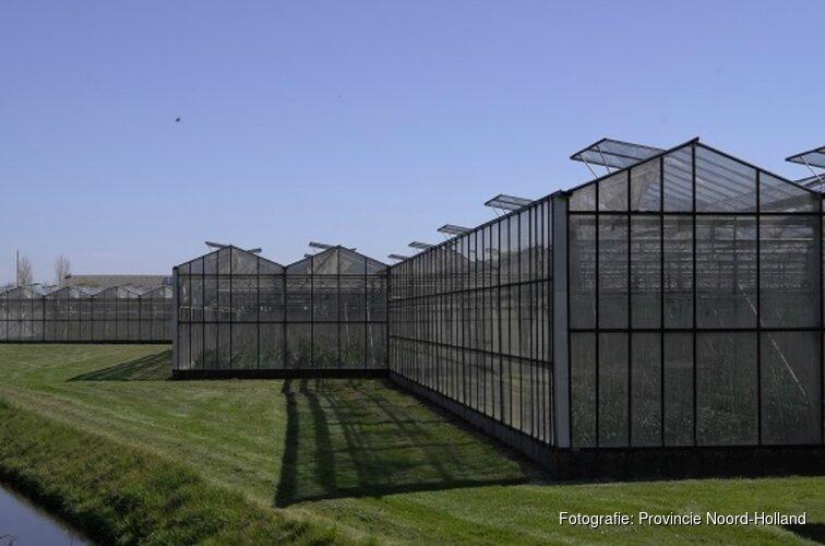 Eerste klimaatneutrale paprikateelt van Nederland in provincie Noord-Holland