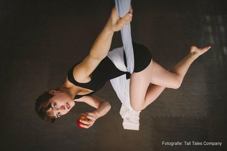 'In het circus is niets onmogelijk'