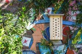Provincie maakt 200 bijenhotels op scholen mogelijk