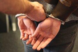 Drie inbrekers aangehouden
