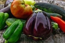 Biologische boerenmarkt in Broek op Langedijk