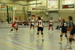 Ardea Volleybal bestaat 25 jaar: 24 augustus feest op Strand van Luna