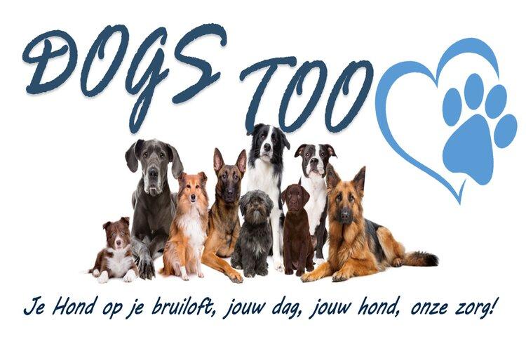 Zin in een dag vol plezier voor hond en baas?