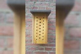 Bijenhotels voor scholen Heerhugowaard