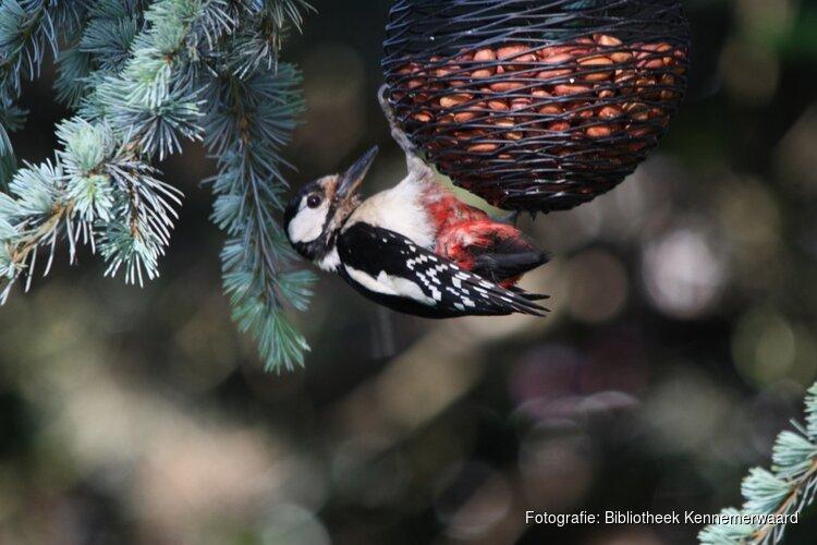 Lezing Vogels rond het huis