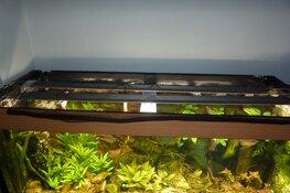 Aquarium- en vijver activiteiten bij Hugo Aqua