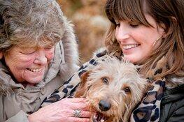 Een oppashond voor senioren: gezellig èn gezond