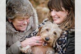 Stichting OOPOEH zoekt senioren en hondenbaasjes